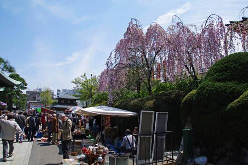 高幡不動尊20100418-8