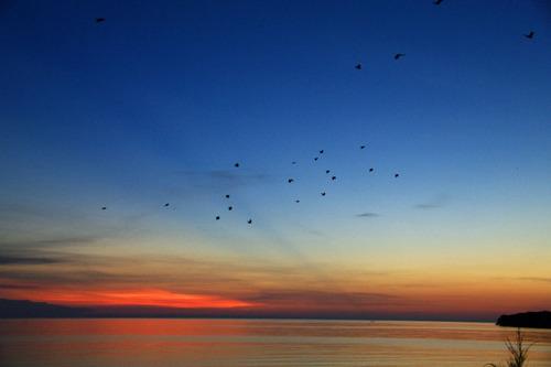 石垣島の夕暮れ201008-2