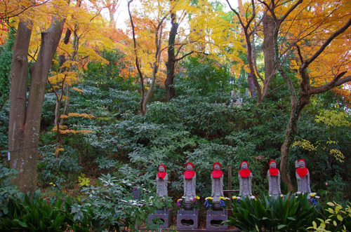 高幡不動201212-12