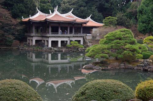 新宿御苑201201-6