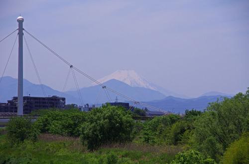 高幡不動201105-13