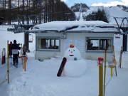 白樺スキー7