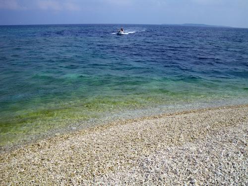 西表島バラス島201008-8