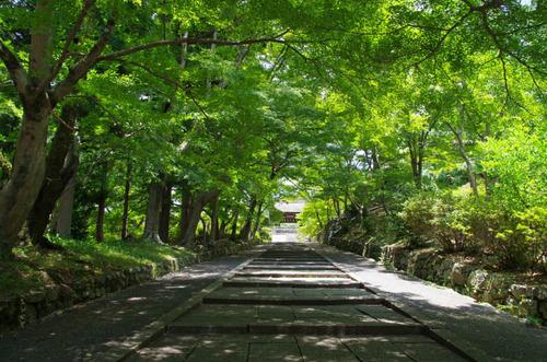 京都201307-9
