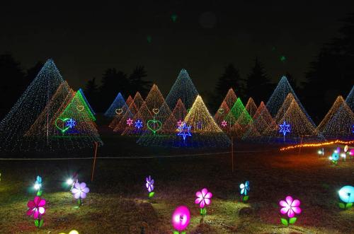 昭和記念公園201312-15