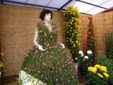 菊まつり飾り-5