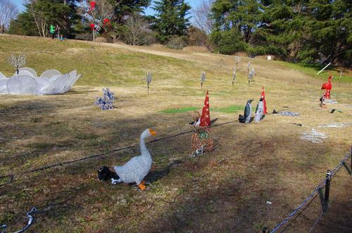 昭和記念公園イルミネーション-13