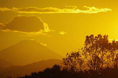 昭和記念公園夕景201211-6