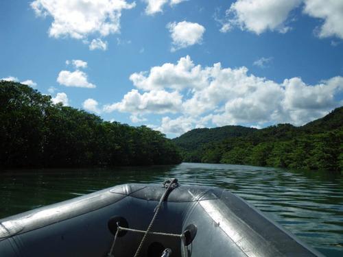 西表島201108-2