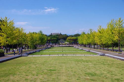 昭和記念公園201510-1