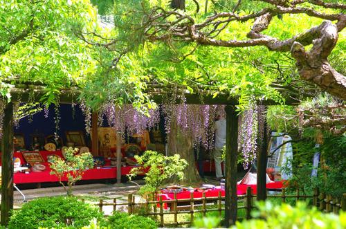 京王百草園201405-9