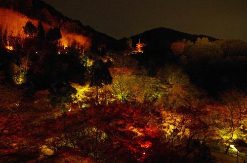 京都清水寺201211-3