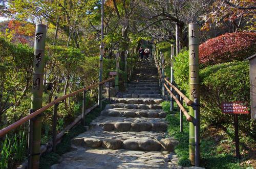 京王百草園201111-1