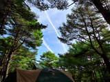 本栖湖キャンプ0811-6