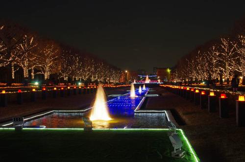 昭和記念公園201312-6