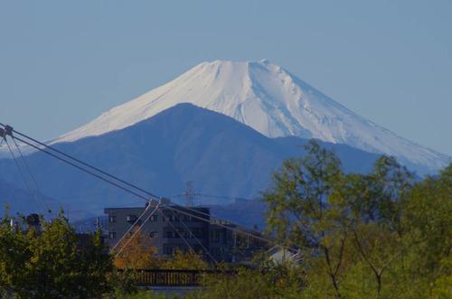 浅川河川敷201112-1