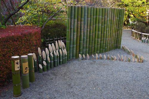 京王百草園201111-5