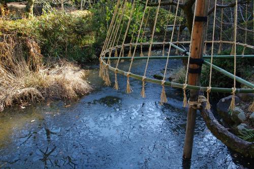 京王百草園201101-11
