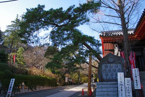高幡不動尊201012-4