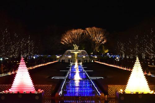 昭和記念公園201512-2