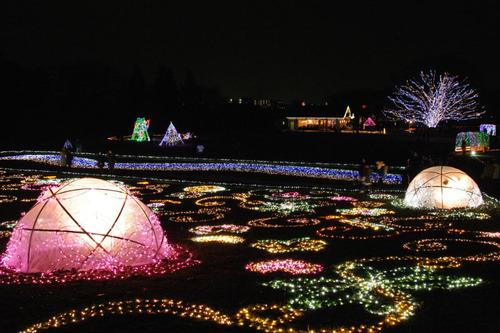 昭和記念公園イルミネーション201012-25