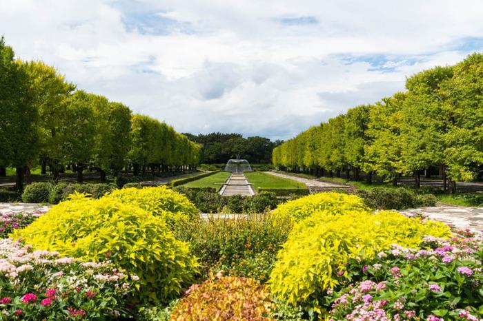 昭和記念公園201809