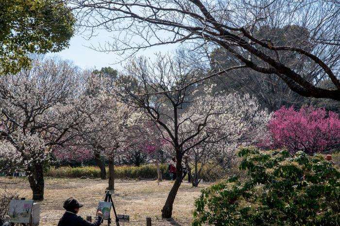 昭和記念公園201803