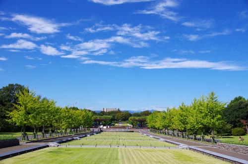 昭和記念公園201109-1