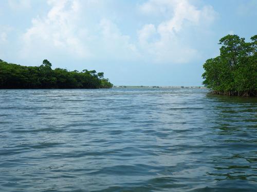 西表島ピナイサーラの滝2010-2