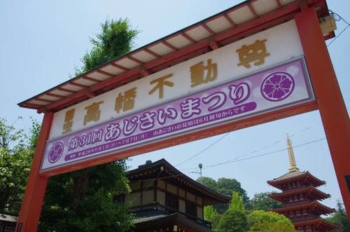 高幡不動201406-13