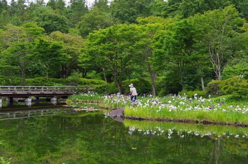 昭和記念公園201206-10