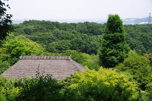 百草園201006-6