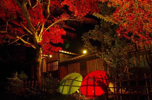 百草園紅葉ライトアップ201211-3