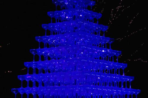 昭和記念公園イルミネーション201012-15