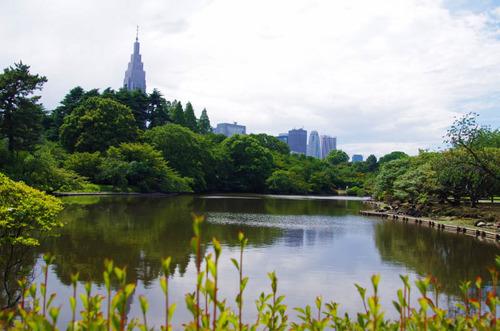 新宿御苑201306-4