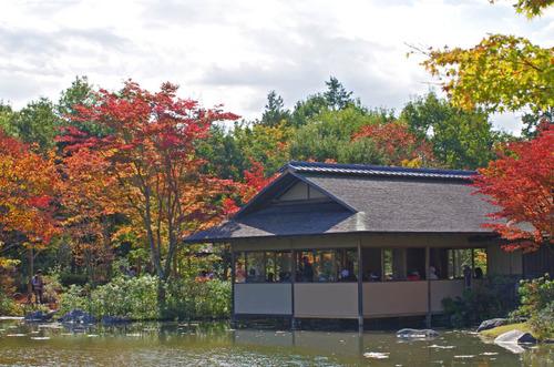 昭和記念公園201411-4