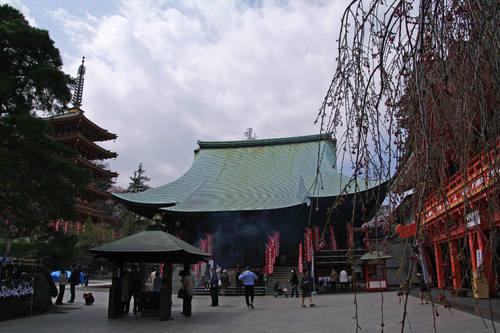 高幡不動尊桜201004-1