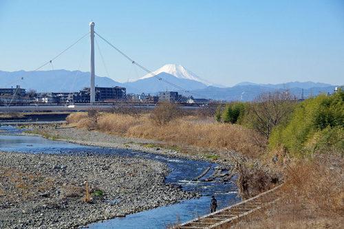 高幡不動尊20100124-11