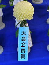 菊まつり受賞-8