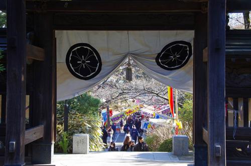 高幡不動尊201201-7