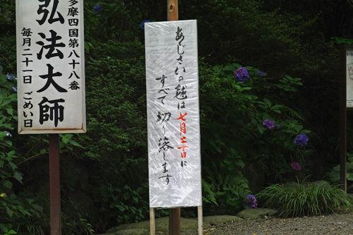 高幡不動尊20100703-4