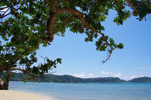 西表島船浮イダの浜201108-11