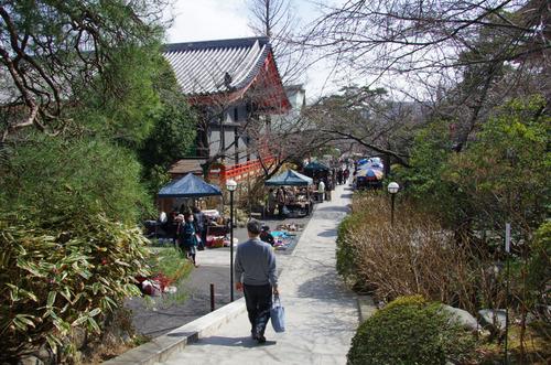 高幡不動尊201103-11
