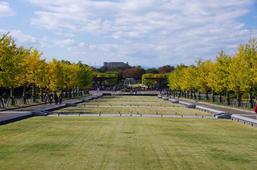 昭和記念公園201211-1