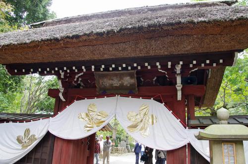 深大寺201110-4