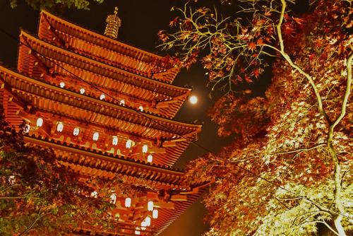高幡不動尊万燈会2015-4