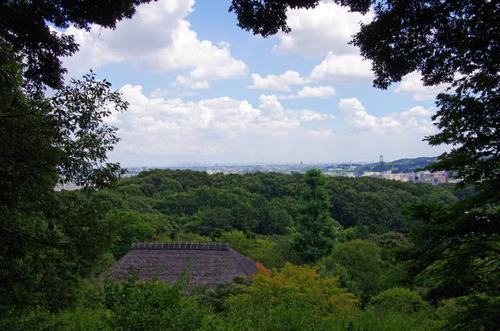 京王百草園201208-9