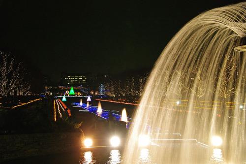昭和記念公園イルミネーション201012-11