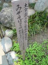 高幡不動0517-6