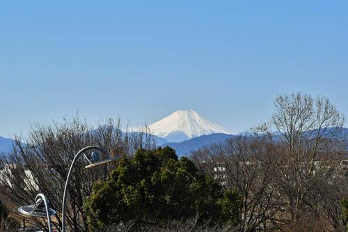 昭和記念公園201702